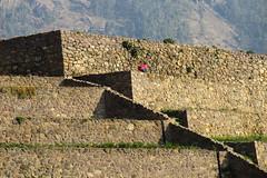 Paisajes de Ollantaytambo (#Panama) Tags: traveler travel peruvian peru ollantaytambo urubambavalley sacredvalleyoftheincas sacredvalley andenes andenesincas roadtomachupicchu