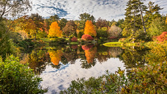 Autumn dreams (hjuengst) Tags: usa acadianationalpark autumn fall colourful orange yellow green maine clouds
