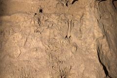 Bear claw marks, vandalism, Cripps Mill Cave, Dekalb County, Tennessee (Chuck Sutherland) Tags: bearclawmarks bear claw scratch marks trace crippsmillcave cave underground dark darkness speleo karst geology limestone leiperscatheysformation ordovician dekalbcounty tennessee tn easternhighlandrim highlandrim