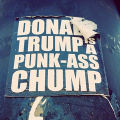 Street corner commentary (Josh Thompson) Tags: sticker chicago lightpole donaldtrump chump galaxys4
