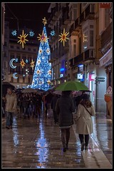 Navidad bajo la lluvia (Ral Mena) Tags: lluvia rain navidad paragas umbrella luces encendido larios christmas