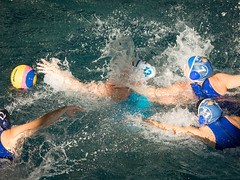 2C041394 (roel.ubels) Tags: len euro league waterpolo sport topsport utrecht uzsc 2016 krommerijn women