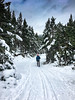 Snowshoeing (Carles Alonso photo) Tags: freedom action alpine nature exploring mountains outdoor explore snow adventure spain mountaneering travel hiking public alpinist wildlife sierra carles ice
