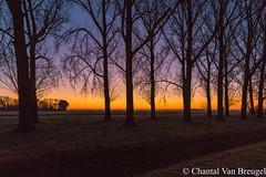 zonsopkomst 05-12-2016 (Chantal van Breugel) Tags: zonsopkomst vaartweg espel noordoostpolder flevoland canon5dmark111 canon1635