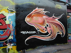 Sodium graffiti fish (duncan) Tags: graffiti leakestreet sodium fish