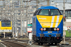 Gand-Gent-Dampoort Infrabel 6202-3 (DiL Photos) Tags: infrabel croissrail sncb am96 bombardier alstom siemens vectron traxx class66 desiro am08 type 13 fret hkm cargo