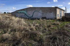 Zamora. 2016. (Jose_Pérez) Tags: zamora cerecinosdelcampo color graffity lagarto rural