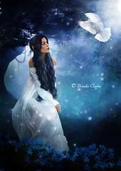Faye (~Brenda-Starr~) Tags: fantasy girl dove lovely imagination fae fairy december2016 elf blue tree
