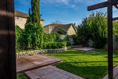 View from the patio (randyherring) Tags: ca california patio elkgrove backyard nature afternoon outdoor plants