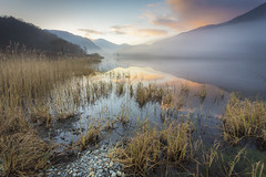 Winter's Pastels (Ffotograffiaeth Dylan Arnold Photography) Tags: llyndinas mist lake pastelcolours reeds pebbles sky sunset clouds eryri snowdonia nantgwynant water ethereal peaceful serene still quiet moel hebog