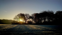 Late November. (elam2010) Tags: dawn sunrise frost shadow silhouettes light winter wintry wirral bluesky countryside farmland rural sony a7 zeiss