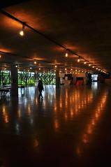 museu (Vitor Nisida) Tags: sãopaulo sp sampa fau fauusp vilanovaartigas artigas arquitetura architecture archshot modernismo brutalismo silhueta sillhouette