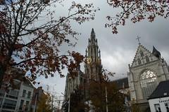 Visita a Amberes (Erasmusenflandes) Tags: amberes catedral ayuntamiento antwerp antwerpen turismo blgica belgium flandes flanders fuente castillo ciudad paisaje skyline landscape