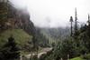 Ascending Rohtang Pass (Niall Corbet) Tags: india himachalpradesh himalaya himalayas manali rohtang rohtangla rohtangpass manalitoleyhighway deodar cedar