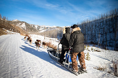 31063091885_eea83d1596_o (Absaroka Dogsled Treks) Tags: winter absarokadogsled inthemoment theskysthelimit millcreek dogsledding scenic landscape sceniclandscape yellowstonecountry