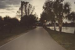 (Samuel Álvarez) Tags: samuel samuelalvarez samuelalvarezm sigradi sigradii wearesigradi somossigradi monterrey mexico puentes caminos puenteatirantado cielo sky fundidora lake lago fuentes waterfountain cerrodelasilla montañas ciudadlasmontañas outdoor mountain peak landscape hill people quinceañera xvañera face pink barrioantiguo obispado child callejones cerro nuevoleon sunset sunrise sun pretty beautiful red orange nature clouds horizon photooftheday gorgeous warm night morning day walks duck riverwalk santalucia