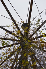 DSC_0908 (skimpics) Tags: haunted abandon abandoned amusementpark themepark burialgrounds native american indian cemetery cemetary creepy halloween scary ghosts ghost demon demonic paranormal woods westvirginia appalachian allhallows pumpkin ferriswheel swing children