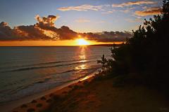 Algarve (Zéza Lemos) Tags: algarve água areia aves praia portugal puestadelsol pordesol natureza natur núvens nuvens mar reflexos entardecer reflections rochas vilamoura sunset sol sunny surf selvagem
