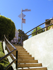 "Steps alongside Lombard to Montclair Terrace • <a style=""font-size:0.8em;"" href=""http://www.flickr.com/photos/34843984@N07/14926233463/"" target=""_blank"">View on Flickr</a>"