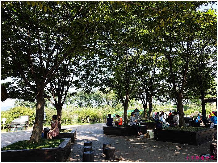 首爾 天空公園 (15).JPG