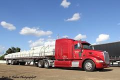 TP Trucking (RyanP77) Tags: show wheel truck cattle dump semi chrome rig pete heavy stockton tanker peterbilt 389 359 hauler cabover 388 379 352 daycab