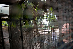 Eralda and the pattor in Taormina // Trip Sicily (Merlijn Hoek) Tags: trip italien vacation italy island vakantie nikon fotografie sicily tuin holliday taormina messina mediterraneansea eastcoast publicgarden itali d800 shorttrip merlijn fotograaf toerist sicili giardinopubblico middellandsezee oostkust merlijnhoek nikond800 publieketuin