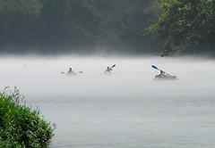 TCB_2553 (_Tim Curtis_) Tags: water fog kayak tennessee kayaking caneyforkriver