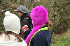 Carter Mountain Orchard Day Trip (Gamma Man) Tags: apple virginia orchard va apples applepicking cartermountain charlottesvilleva charlottesvillevirginia cartermountainorchard carterorchard
