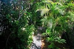 Key West (Florida) Trip, November 2013 0465Ri 4x6 (edgarandron - Busy!) Tags: keys florida keywest floridakeys blueparrotinn