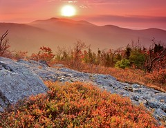 Mt. Roberts sunrise (rightthewrong) Tags: new autumn trees mist mountain mountains fall sunrise haze october mt oct nh hampshire mount roberts shrub hazy range shrubs 2014 ossipee