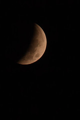 1/2 eclipse (jimmy_racoon) Tags: moon canon eclipse is blood mk2 5d astronomy lunar 70200 lunareclipse bloodmoon f4l 70200f4lis canon5dmk2
