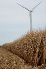 DSC_1086 (Dober Man) Tags: windmill fan illinois wind farm electricity blade windfarm hopedale sigma70200mmf28exdgoshsm