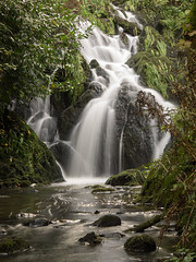 Waterfall at Crawfordsburn 2014 (frcrossnacreevy) Tags: waterfall northernireland 1001nights crawfordsburn greatphotographers platinumheartaward 1001nightsmagiccity olympusem1