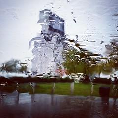 Engagement session in the rain. #neversaynever #rainingcatsanddogs #rainraingoaway #buffalowedding #buffalo (Michael William Thomas) Tags: wedding ny newyork mike square photography michael buffalo photographer thomas squareformat hudson mikethomas mtphoto iphoneography instagramapp uploaded:by=instagram michaelwilliamthomas