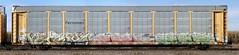 Versuz/Salem/Eser (quiet-silence) Tags: railroad art train graffiti railcar salem graff freight eser autorack fr8 eot ferromex versuz ttgx979883