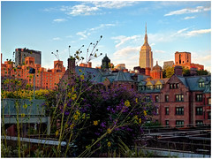 The Empire State Building from High line ~ NYC (SergeK ) Tags: park street city newyorkcity railroad newyork west skyscraper manhattan side central line midtown story disused empirestatebuilding avenue 103 highline linear fifth west34th