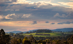 Warragul Spring evening - Explored (laurie.g.w) Tags: sunset sky cloud west tree grass rural season landscape evening spring farming australia victoria pasture gippsland warragul