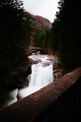 (Ⓜⓡ. Ⓔⓓ) Tags: wood autumn fall water waterfall wideangle filter underexposed maltatal nikond700 bw30nd nikkor1635f40vr gössfall
