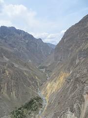 Colca Canyon-16