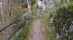 GOPR3941 (maa) Tags: schwarzwald moos felsen wanderung wanderweg