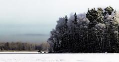 Ghost rider (Jyrki Liikanen) Tags: shadow ice nikon 26 freezing freeze icy d800 icylake horserider jyrkiliikanen snowsnowysnowy islandlandscapesnowy