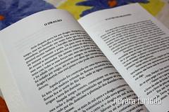 flammifer2 (NeyaRa Furtado) Tags: flammifer livro infantil criana drago darda