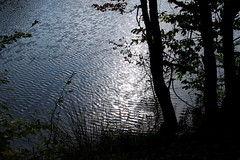 a csillagoktól csillogok / my glitters are from the stars (debreczeniemoke) Tags: erdély transilvania transylvania nagybánya baiamare fernezely tájkép landscape ősz autumn erdő forest tó bóditó lake pond olympusem5