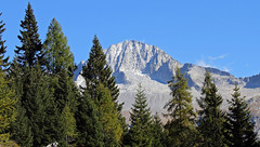 Mount Car Alto (Adamello Presanella Alps) (ab.130722jvkz) Tags: italy trentino alps easternalps rhaetianalps adamellopresanellaalps mountains