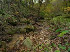 P1150127 (TallGrass-IA) Tags: edgewood iowa unitedstates us panasonic g6 1235 lumix micro43 microfourthirds waterfalls longexposure hiking outdoor nature moss