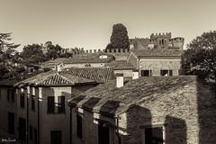 Gradara (ambrasimonetti) Tags: gradara castello castle marche italia italy pesarourbino rocca
