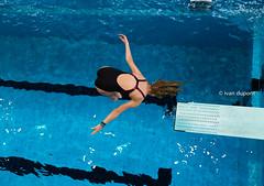 Halloweenduik in Antwerp, Belgium (monsieur I) Tags: action antwerp athletic belgium blue competition dive diving extreme halloweenduik2016 intheair monsieuri skills sport sports water