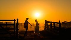 Vem aqui.. (HenriqueMBauer) Tags: prdosol cu livre ar ao sunset pordosol casal gaucho nikon fazenda sun sol trash dress trashthedress casamento ensaio noiva noivo