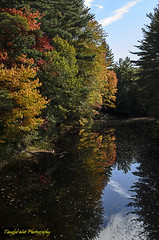 Isinglass River (Tangled Web Photography) Tags: fallfoliage autumncolor forest woods newhampshire newengland naturephotography rivers reflections