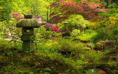 Japanese garden, Clingendael, The Hague (k335w) Tags: denhaag japansetuin clingendael thehague